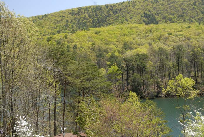 Spring at Smith Mountain Lake